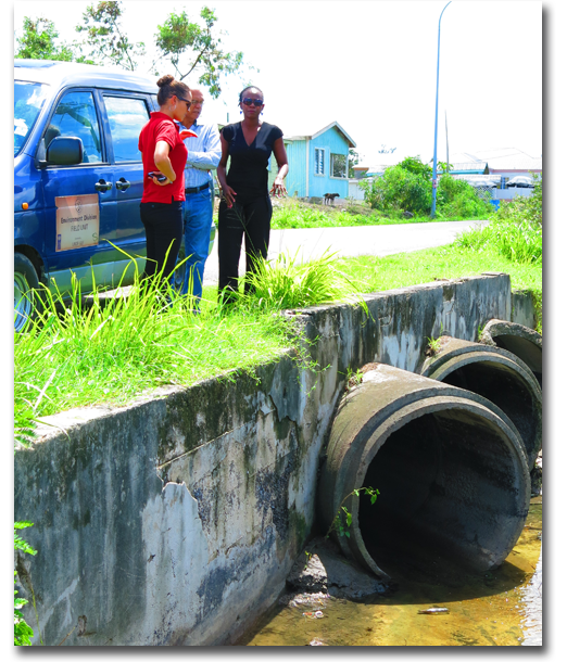 Environmental-Consultancy-Services