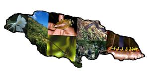 Jamaica-Biodiversity